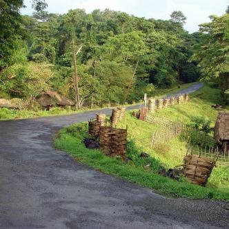 ... im Abschnitt Middle Andaman