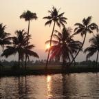 Im Land der Kokospalmen